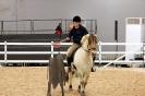 2015 Int Horse Show Sweden_5