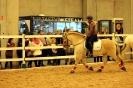 2015 Int Horse Show Sweden_7